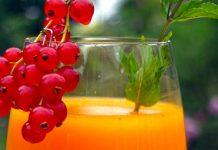 Bio-Sanddornsaft mit Mineralwasser als Erfrischungsgetränk