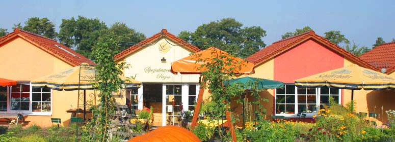 Sanddorn-Erlebnis-Garten-Petzow