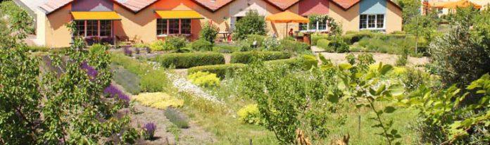 Sanddorn-Frucht-Erlebnisgarten in Petzow bei Werder (Havel)