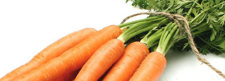 Sanddorn-Karotten-Suppe – schnelles Rezept für einen besonderen Genuss