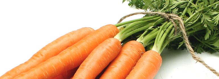 Rezept Sanddorn-Karotten-Suppe